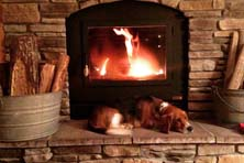acucraft zmax wood burning fireplace with sleeping dog