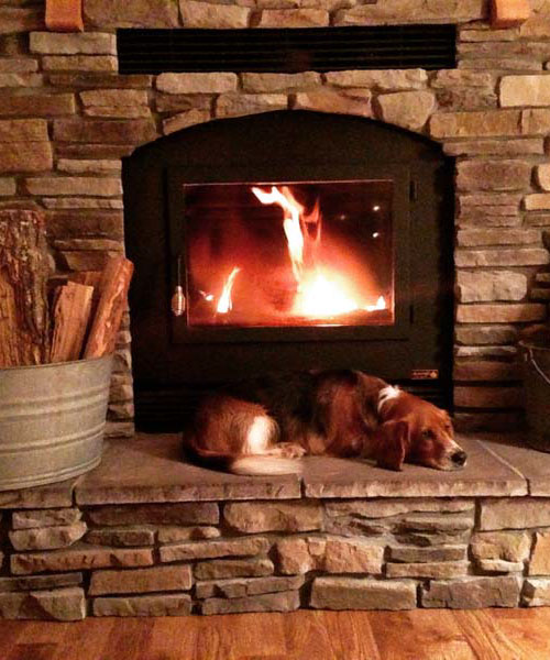 single sided wood fireplace with sleeping dog in living room