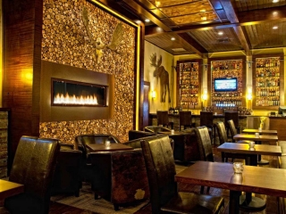 linear gas single sided fireplace at restaurant and bar