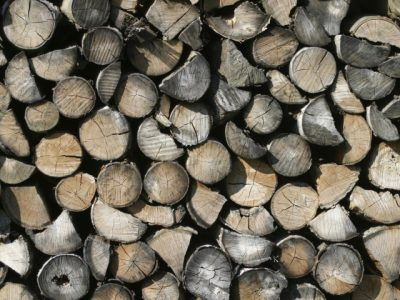 Dry Seasoned Wood has a much lighter weight , a dark appearance and cracks or splits of the end grain