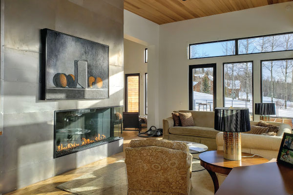 multi view direct vent fireplace